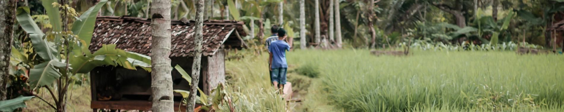 Projets action missionnaire, paysage asiatique